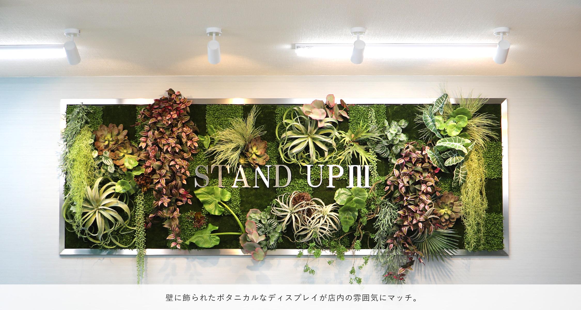 壁に飾られたボタニカルなディスプレイが店内の雰囲気にマッチ。